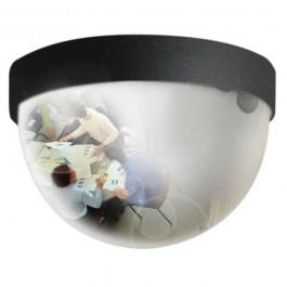 NeXus verborgen bewakingscamera achter een bolspiegel